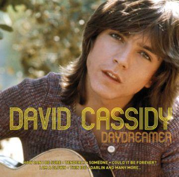 DAVID CASSIDY / デヴィッド・キ...