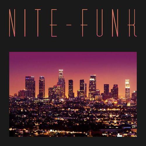 "NITE-FUNK (DAM-FUNK & NITE JEWEL) / NITE-FUNK 12"""
