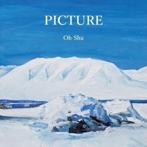 王舟 / PICTURE(アナログ)