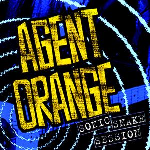 AGENT ORANGE / エージェントオレンジ / SONIC SNAKE SESSION (2CD)