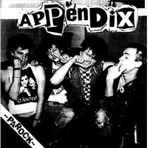 "APPENDIX / アペンディックス / PAROCK (7"")"