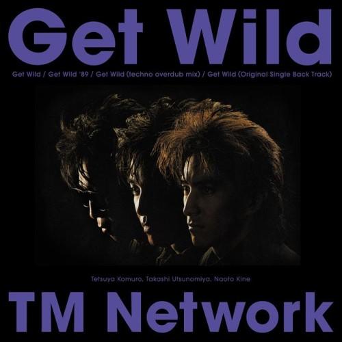 TM NETWORK / ティー・エム・ネットワーク / Get Wild(アナログ)