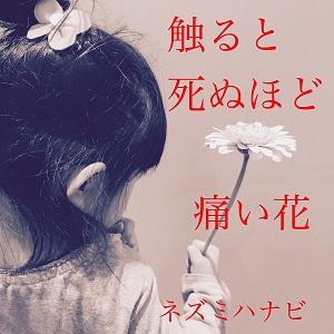 ネズミハナビ / 触ると死ぬほど痛い花