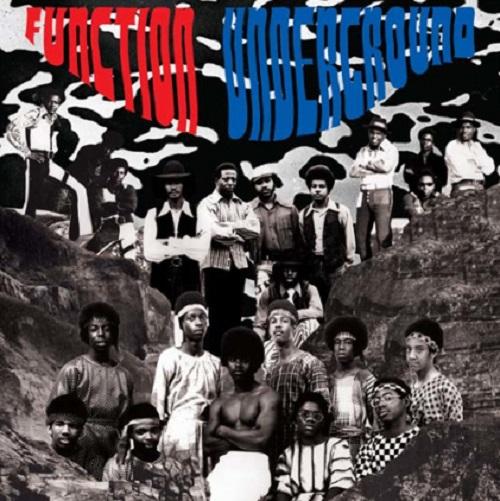 FUNCTION UNDERGROUND / BLACK AND BROWN AMERICAN ROCK SOUND 1969-1974 (LP)