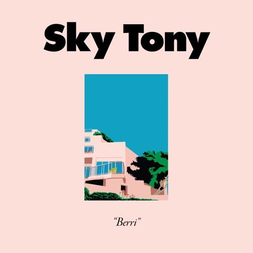 SKY TONY / BERRI EP