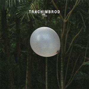 Trachimbrod / Leda