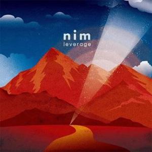 nim / leverage