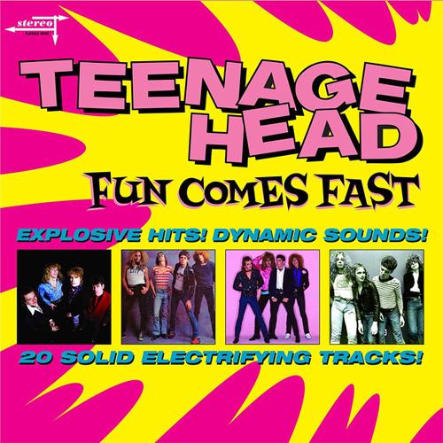 TEENAGE HEAD / ティーンエイジヘッド / FUN COMES FAST (LP)