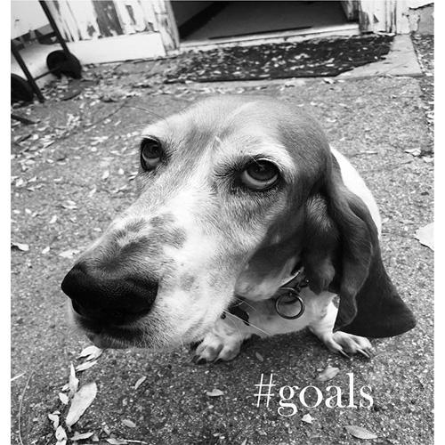 #GOALS / #GOALS
