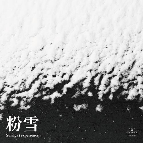 SUNAGA T EXPERIENCE / スナガ・ティー・エクスペリエンス / 粉雪 / SQUAW MARCH