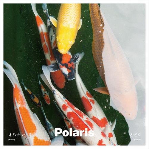 Polaris (J-POP) / オハナレゲエ / とどく