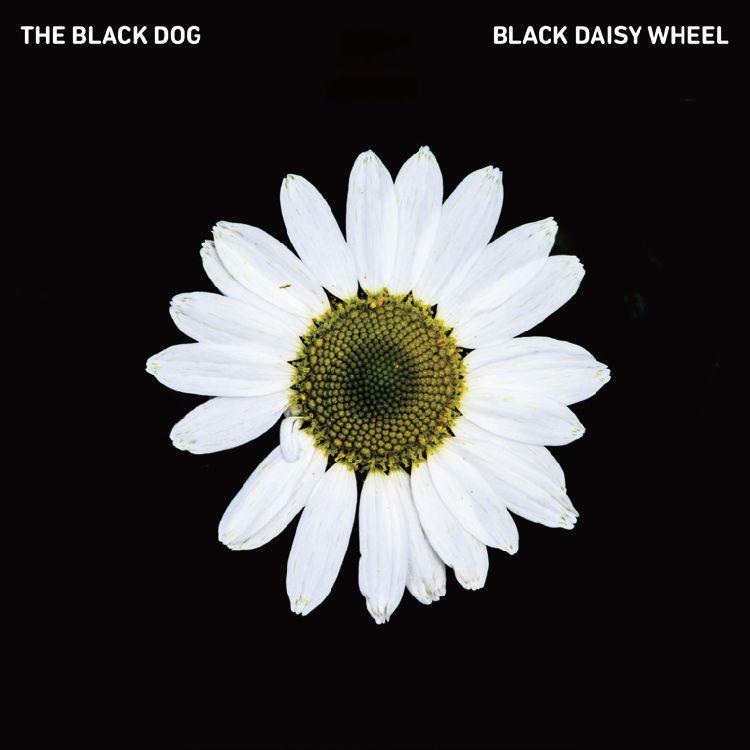 BLACK DOG / ブラック・ドッグ / BLACK DAISY WHEEL (国内仕様盤)