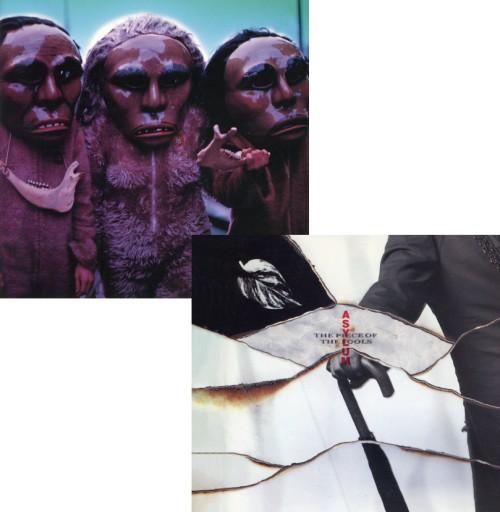 ASYLUM / ASYLUM (再発盤) +THE PIECE OF THE FOOLS (再発盤) まとめ買いセット