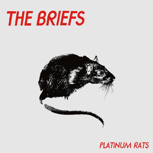 BRIEFS / ブリーフス / PLATINUM RATS