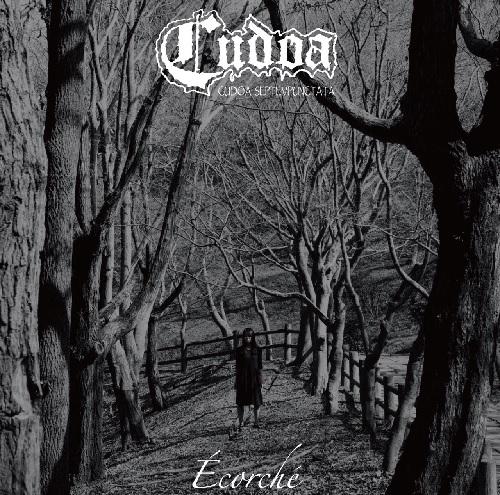 Cudoa / Ecorche