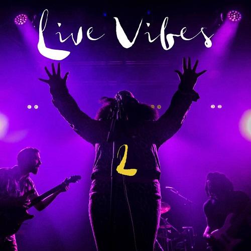 TANK & THE BANGAS / タンク・アンド・ザ・バンガーズ / LIVE VIBES 2(LP)