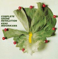 KEIKI MIDORIKAWA / 翠川敬基 / 完全版「緑色革命」