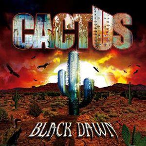 CACTUS / カクタス / BLACK DAWN