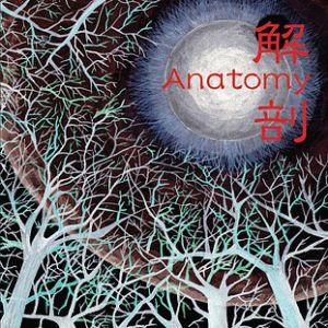 ANATOMY / アナトミー / 解剖