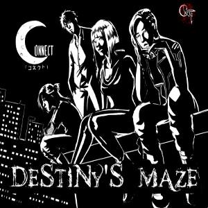 CONNECT (METAL) / コネクト / DESTINY'S MAZE / ディスティニーズ・メイズ