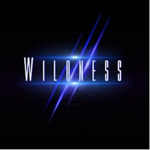 WILDNESS   / ワイルドネス / WILDNESS / ワイルドネス