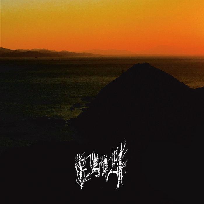 EBOLA / エボラ / II