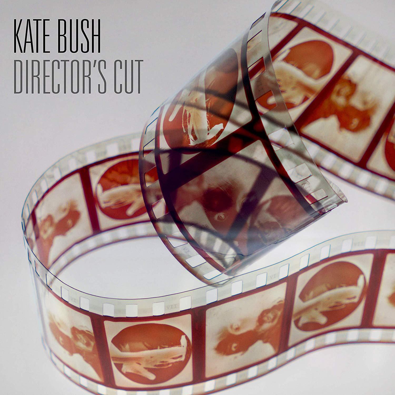 KATE BUSH / ケイト・ブッシュ / DIRECTOR'S CUT (2018 REMASTER 180G 2LP)