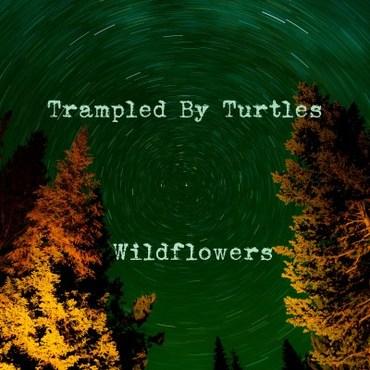 "TRAMPLED BY TURTLES / WILDFLOWERS [7""]"