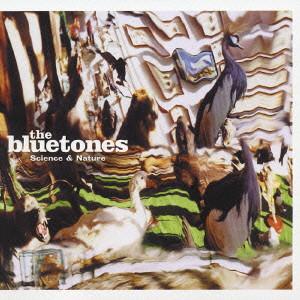 BLUETONES / ブルートーンズ | d...