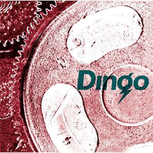 DINGO / DINGO