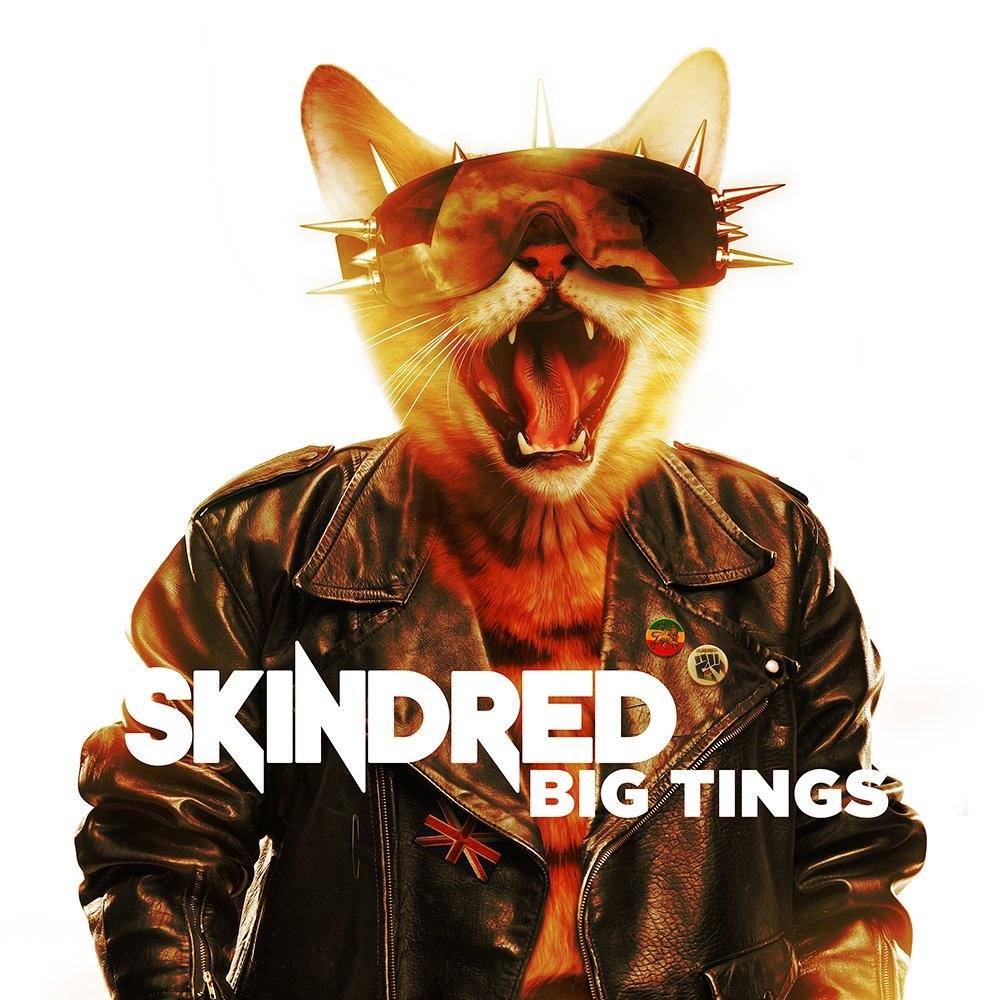 SKINDRED / スキンドレッド / BIG TINGS / ビッグ・ティンズ