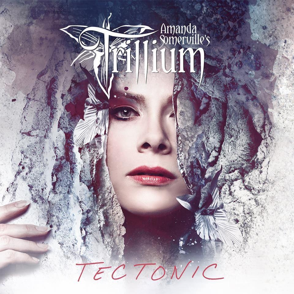 TRILLIUM / トリリアム / TECTONIC / テクトニック