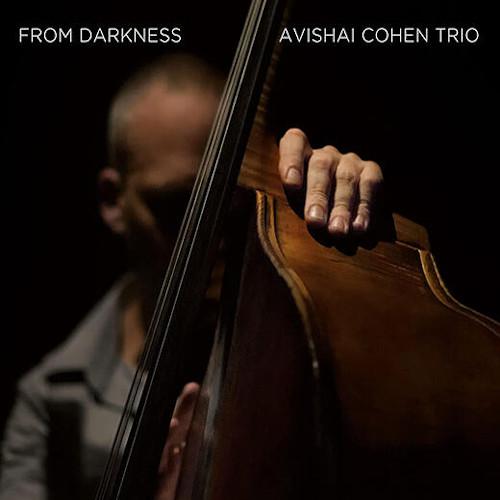 AVISHAI COHEN (BASS) / アヴィシャイ・コーエン / From Darkness(LP)