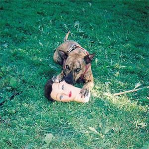 JOYCE MANOR / ジョイス・メイナー / CODY (LP)