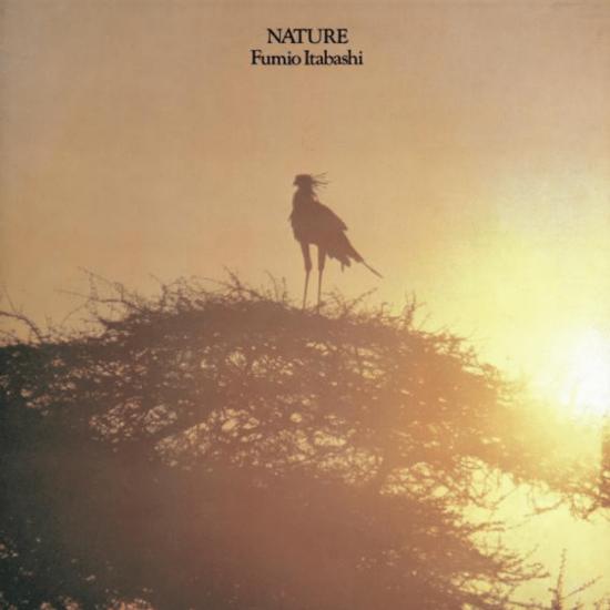 FUMIO ITABASHI / 板橋文夫 / Nature(LP)