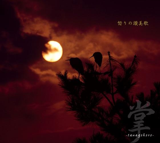 掌-tanagokoro- / 怒りの讃美歌