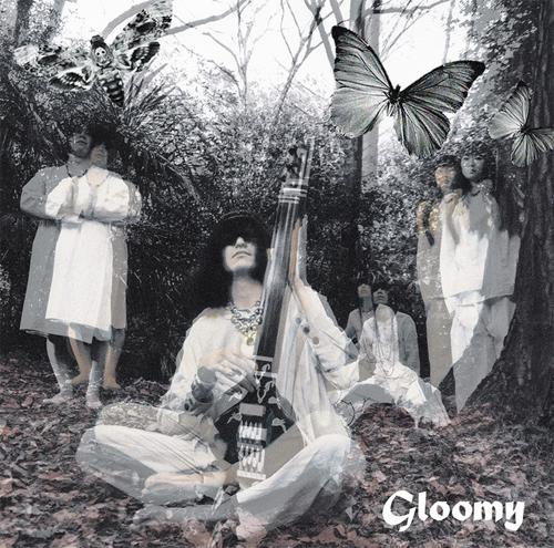 毛皮のマリーズ / Gloomy (LP)