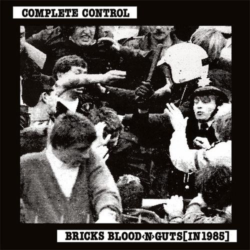 COMPLETE CONTROL / コンプリートコントロール / BRICKS BLOOD GUTS (LP)
