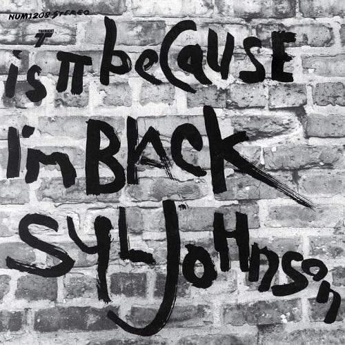 SYL JOHNSON / シル・ジョンソン商品一覧|SOUL / BLUES|ディスク ...