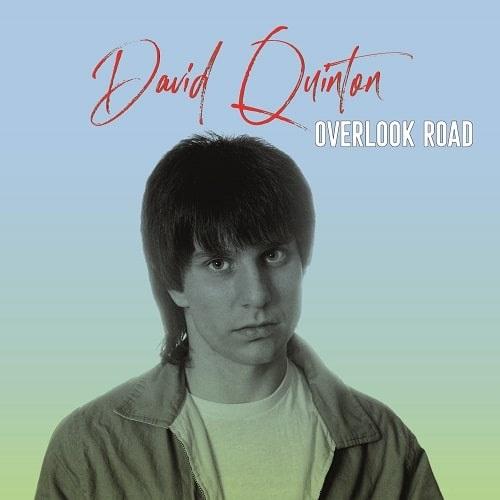 DAVID QUINTON / デイヴクイントン / OVERLOOK ROAD(LP盤)