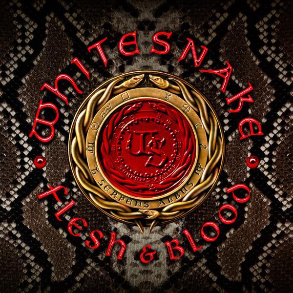WHITESNAKE / ホワイトスネイク / FLESH & BLOOD / フレッシュ・アンド・ブラッド<初回限定盤CD+DVD>