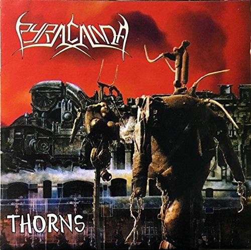 PYRACANDA / ピラカンダ / THORNS